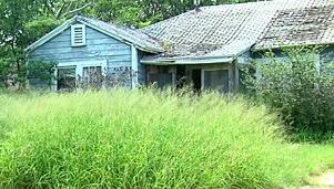 squatterhouse